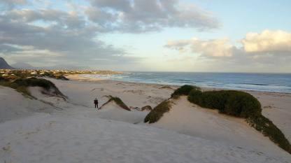 Sand Dunes 004