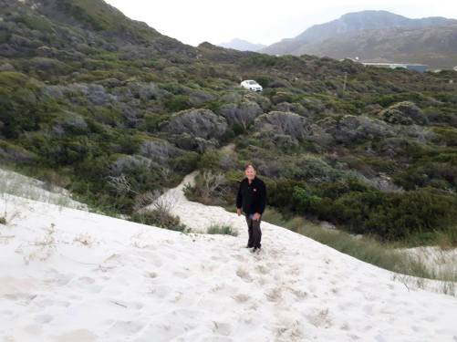 Sand Dunes Betty's Bay